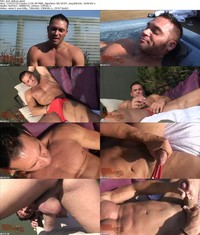 bear gay porn Picture fileinfo pehr