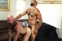 bear gay sex Picture hairy gay roman marco pantheon bear