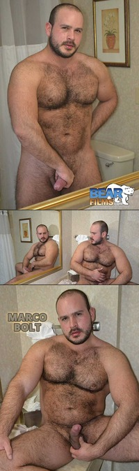 bear man gay sex collages bearfilms bear films marco bolt cute cuddly man