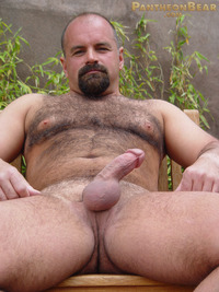 bear porn pics dave pantheon bear hairy goatee sexy hot ass jockstrap cock ring football jersey beefy stocky gay porn paw tattoo boots jeans woof alert