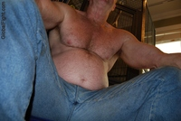 best gay daddy porn plog hairychest musclebears very furry daddies fuzzy studly manly men huge muscle daddy bears balding hairy chests jeans crotch burly man gay best muscles