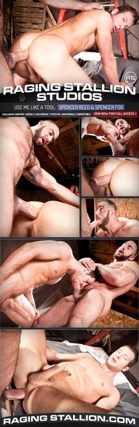 best gay porn website strong men gay porn muscular hairy man spencer reed gets guy fox