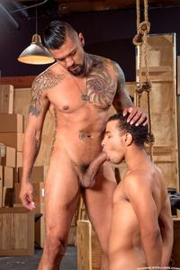 big black gay dick porn raging stallion boomer banks trelino huge uncut cock fucking black ass amateur gay porn category