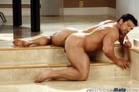 big cock gay porn bodybuilder huge muscle hunk gay porn star vince ferelli jacks off his cock next door male mid