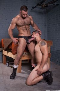 big dick muscle hunk hairy muscle hunk bruno knight gets his cock sucked off plows hung stud dominic sol fucked hard from raging stallion studios pic