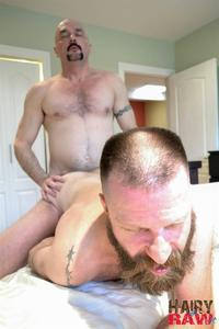 big gay daddy porn hairy raw troy collins canadad masculine daddies fucking bareback amateur gay porn category