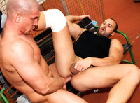 big gay daddy porn out public tomm max bareback uncut cocks amateur gay porn daddy