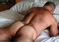 big hairy gay sex gay bear ass hairy musclebear muscled beefy daddy nude entry