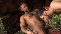 big men cocks hairy muscle hunk dirk caber hung stud trent locke suck off each others hard cocks fur mountain from colt studio group pic author wallymax page