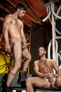 big naked cocks ripped muscle hunks benjamin godfre shawn wolfe strip naked stroke their hard cocks together from raging stallion studios pic