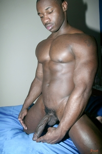 black and Latin gay porn blackgaypics beefy black stud latin gay men xxx porn latino wild gone lovers