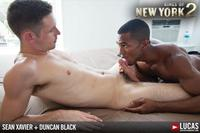 black black gay porn lucas entertainment kings york season sean xavier duncan black interracial fucking cock amateur gay porn white hunk takes his ass eats load