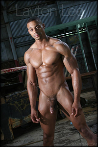 black gay man porn gallery legend men layton lee aka david vance gay sexy naked man porn stars muscle bodybuilder nude bodybuilders black male tube red photo