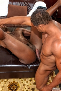 black gay porn galleries media nude black gay porn