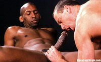 black gay sex site prefer black cocks cock gay white guys