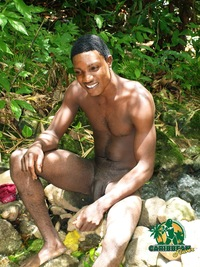black naked males caribbeanflavor gangster category caribbean black males