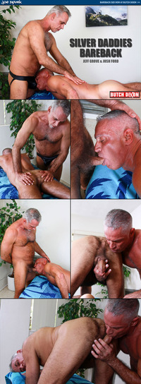 gay bear bareback porn collages butchdixon jeff grove josh ford silver daddies barebacking butch dixon