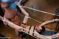 gay bear bareback porn boundgods gay bear bareback