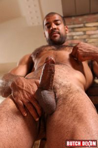 gay bear cub porn roman wright gay bear cub his sport suite hard cock inside