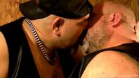 gay bear daddy porn chubby leather bears page