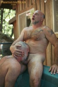 gay bear free porn dbec bbf gallery bear suck gay