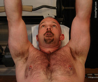 gay bear Pic porn media gay bear cub porn pierced nips workout gym