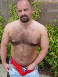 gay bear porn Pic dave pantheon bear hairy goatee sexy hot ass jockstrap cock ring football jersey beefy stocky gay porn paw tattoo boots jeans footballers