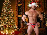 gay bear porn pics docs nude gay bear santa claus hary hunk shirtless bulge christmas tree decorated butts
