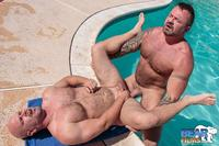gay bear porn Picture bear films marc angelo wade cashen hairy muscle bears fucking bearback amateur gay porn category page