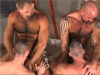 gay bear sex Pic gay bear orgy foursome musclebear daddybear sucking fucking hairy beard bears each group