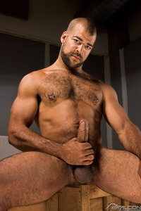 gay black bear porn posts roman wright gay stars