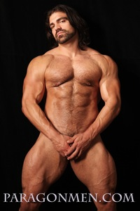 gay bodybuilder porn pics bodybuilder gay porn icon jared degado aka vince ferelli strips naked strokes his hard cock greg weiner paragon men pic author wallymax page