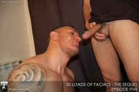 gay cock sucking porn gay porn icons muscle hunks damien crosse francesco dmacho suck anonymous cock loads facials sequel stag homme studios pic