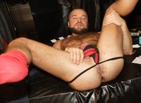 gay hairy bear porn hairy gay bottom ass david novak bears fucking