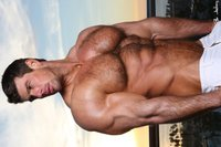 gay hairy hunks pics gallery hot muscle men zeb atlas gay musclebuds fotos