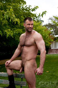 gay hairy men porn aaron cage gay hardcore porn star muscle bear hairy huge pecs bottom ass jockstrap colt studio group gruff stuff brenden fucking sucking masculine woof alert
