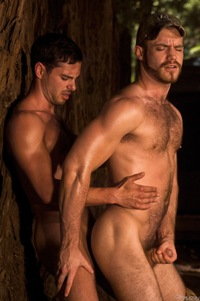 gay hairy sex Pics fuck falcon studios roughin outdoor masculine muscular fucking sucking rimming rugged hairy smooth woods nature hot gay hardcore action men falcons