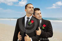 gay men free pic gay grooms royalty free stock photography