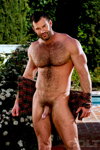 gay muscle bear porn aaron cage gay hardcore porn star muscle bear hairy huge pecs bottom ass jockstrap colt studio group gruff stuff brenden fucking sucking masculine woof alert