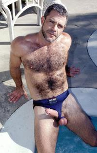 gay photo hairy screen gay hairy buffed bear chest posing