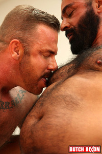 gay porn bears emo bears pete finland tom colt licking nipples category