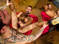 gay porn bears pictures bears hairy boyz extremely gay foursome porn galleries