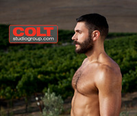 gay porn colt colt bob hager photo category studios