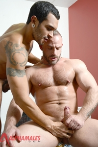gay porn colt gallery alphamales samuel colt lucio saints gay porn star muscle hunk ass fuck man hole pics video photo