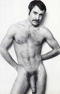 gay porn dick media vintage retro porn dick mustache pornstache gay star hairy cock