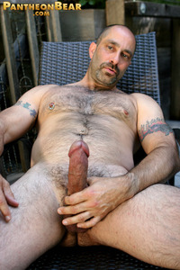 gay porn hairy bears gallery hairy mature man men galleries gay