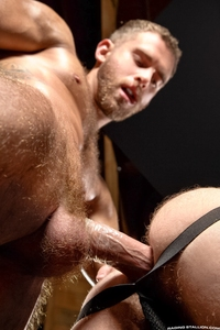 gay porn muscular heath jordan bottoms shawn wolfe militia gay porn studio raging stallion thank cock its friday back his fuzzy muscle ass better ever