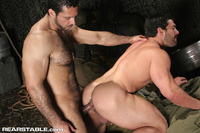 gay suck cock porn hairy muscle hunk adam champ sucks cock fucks bodybuilder gay porn star vince ferelli night maneuvers from rear stable pic