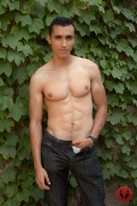 gays mens porn Pics antonio galvan randy blue video gay porn stars naked muscle boys muscled men young nude studs tattooed hunks gallery photo