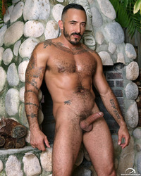 hairy gay bears porn porn addicted bear alessio romero hairy gay muscle men